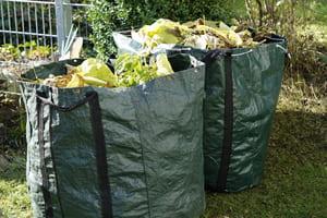 Les déchetteries peuvent prendre les déchets verts
