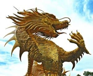 Les dragons font partie des motifs récurrents sur les tapis chinois