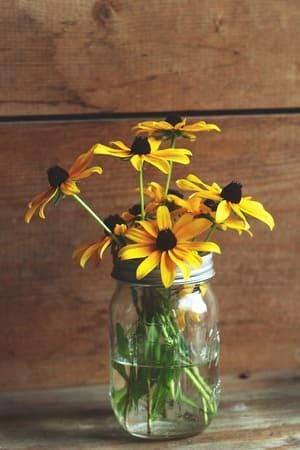 Vos fleurs dans d'anciens bocaux à bougie