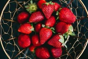 Pour les fruits et légumes, le label bio ne trompe pas