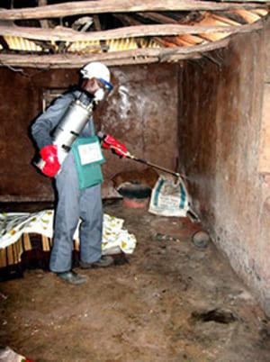 Nettoyage et desinsectisation d'un logement
