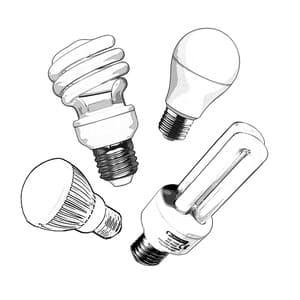 Presque toutes les ampoules commercialisées sont recyclables