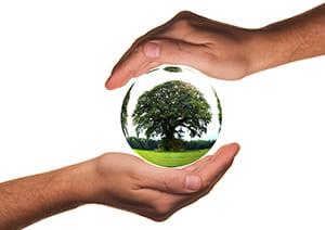 Vider la maison tout en protégeant la planète, c'est possible